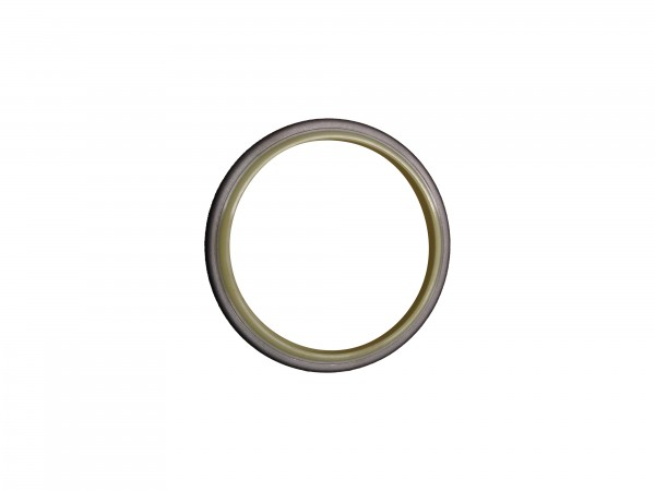 Abstreifer mit Metallkäfig 65x79x8