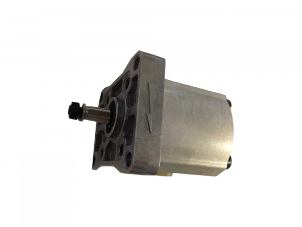 WP03B1B038R22NA124N Hochdruck-Zahnradpumpe W300
