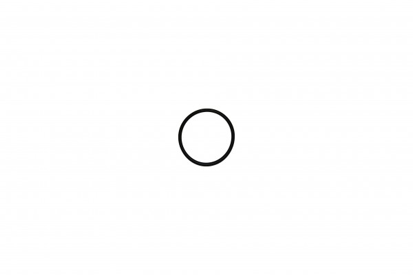 O-Ring 6x2,5 70Shore