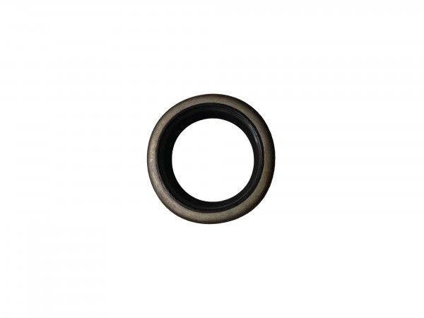 Abstreifer mit Metallkäfig 25x35x5/8