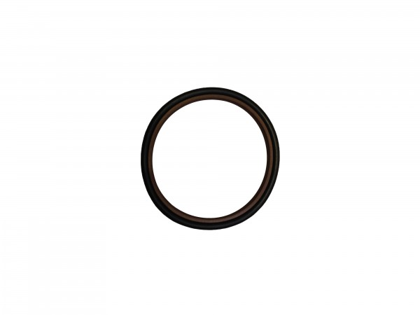 GLYD-Ring/Stangendichtung 55x65,7x4,2 doppelwirkend